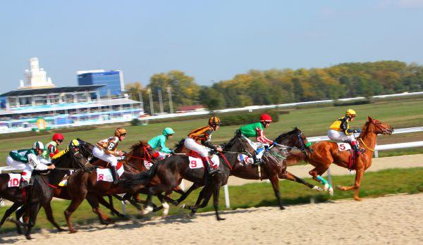 Top 10 Horse Races In Australia