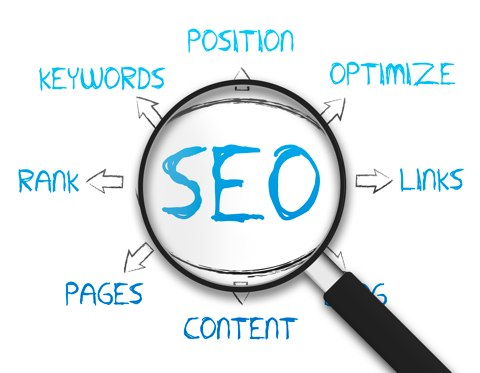 How To Have A Career In SEO Industry