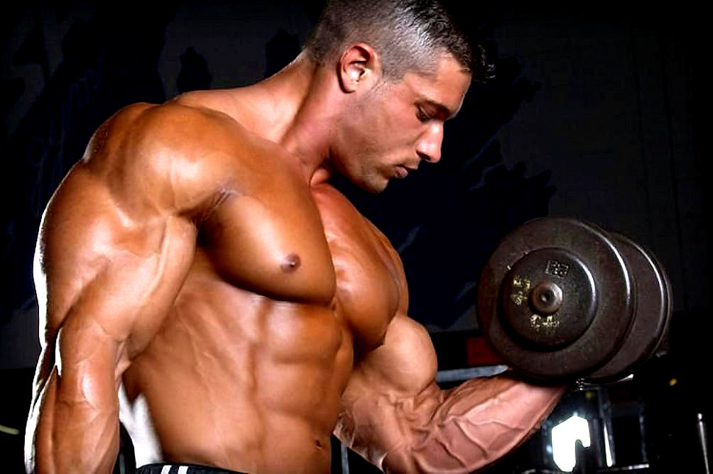 Body Building – An Insight