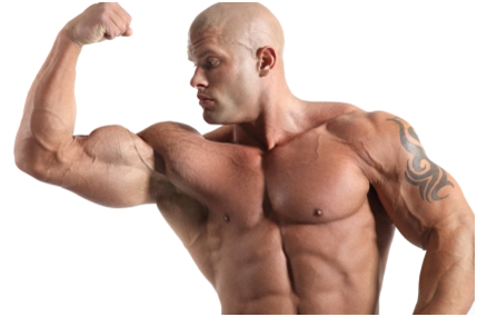 Clenbuterol – Best Anabolic For Weight Loss