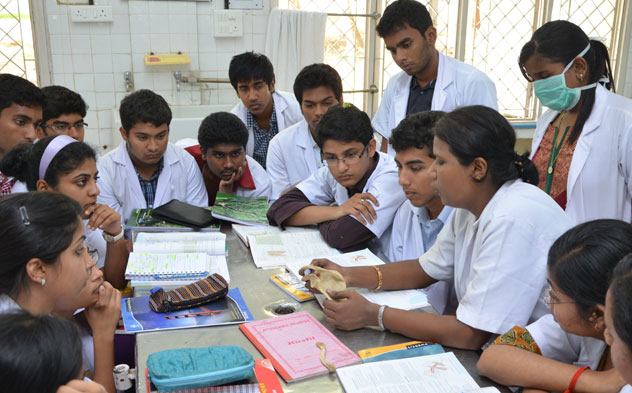 Basic Pattern Of Medical Courses In Indian Medical Colleges