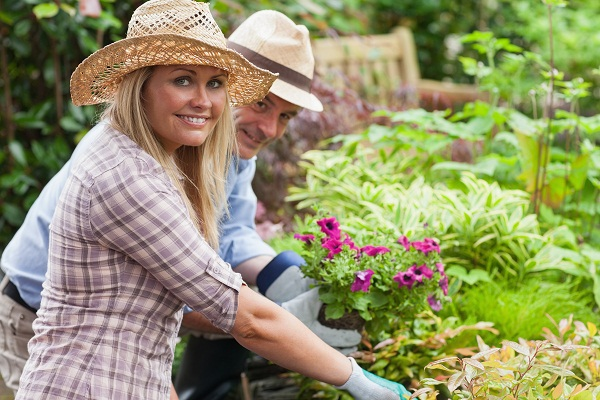Key Things To Do In Your Garden During The Summer