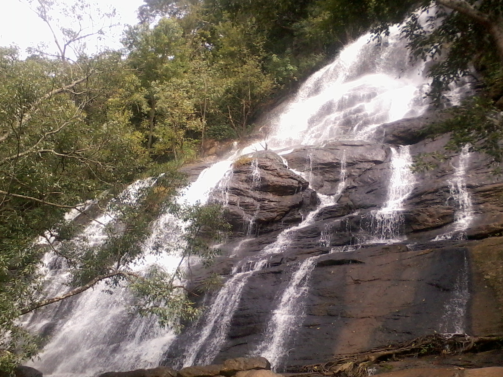 Rejuvenating The Mind and Soul In The Tranquil Town Of Yercaud
