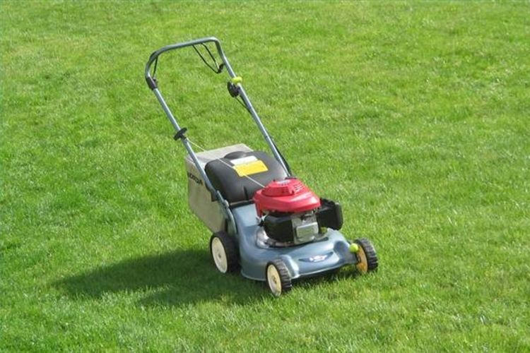 Fake Grass In Essex Is Gradually Gaining Popularity