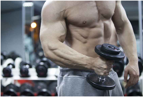 Tough and The Tested Muscle Building Solution