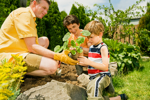 Gardening and Your Kit Home Worthwhile Activities For Your Family