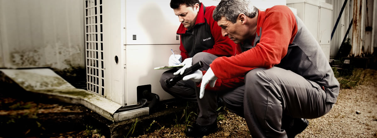 Have Face Enough Problems Because Of Pests- Hire Pest Controllers London