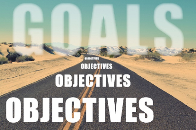 Major Goals and Objectives Of Level Brand