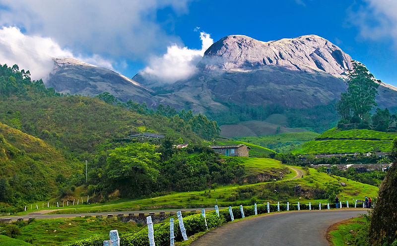 Things To Do During Your Visit To Munnar