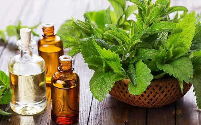 Source Natural Blends From The Essential Oils Wholesaler In Kannauj