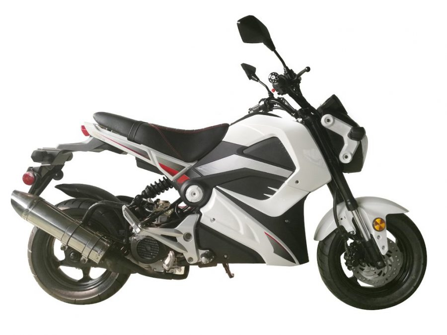 Everything You Wanted To Know About A 40CC Pocket Bike