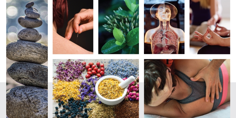 Educating Individuals About An Alternative Medicine