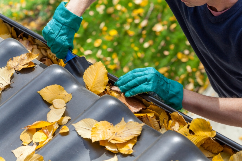 Tips For Exterior Home Maintenance