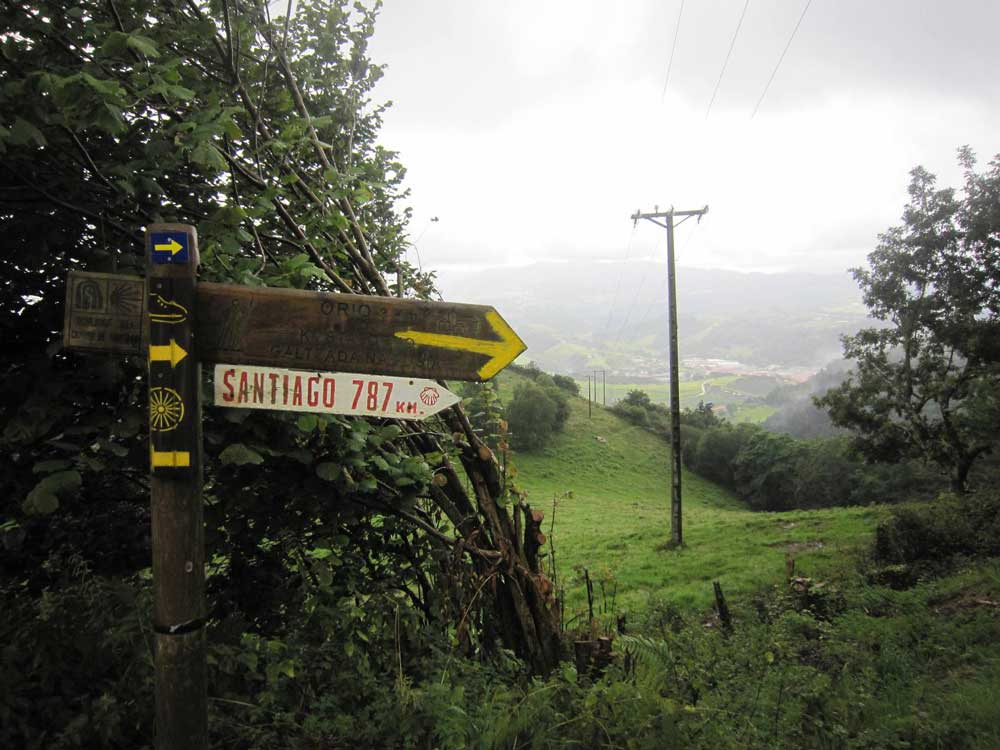 Facts You Need to Know About the Camino del Norte