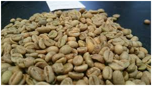 Buying Coffee For Your Café? Let Me Help You Choose The Right Beans